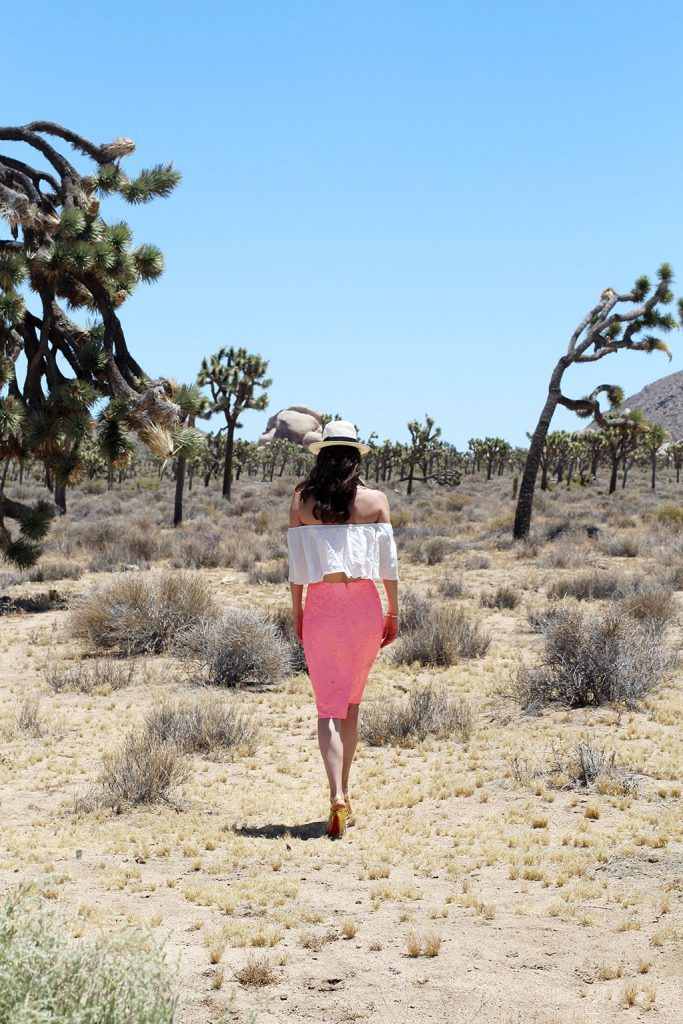 Palm Springs Travel Diary Joshua Tree